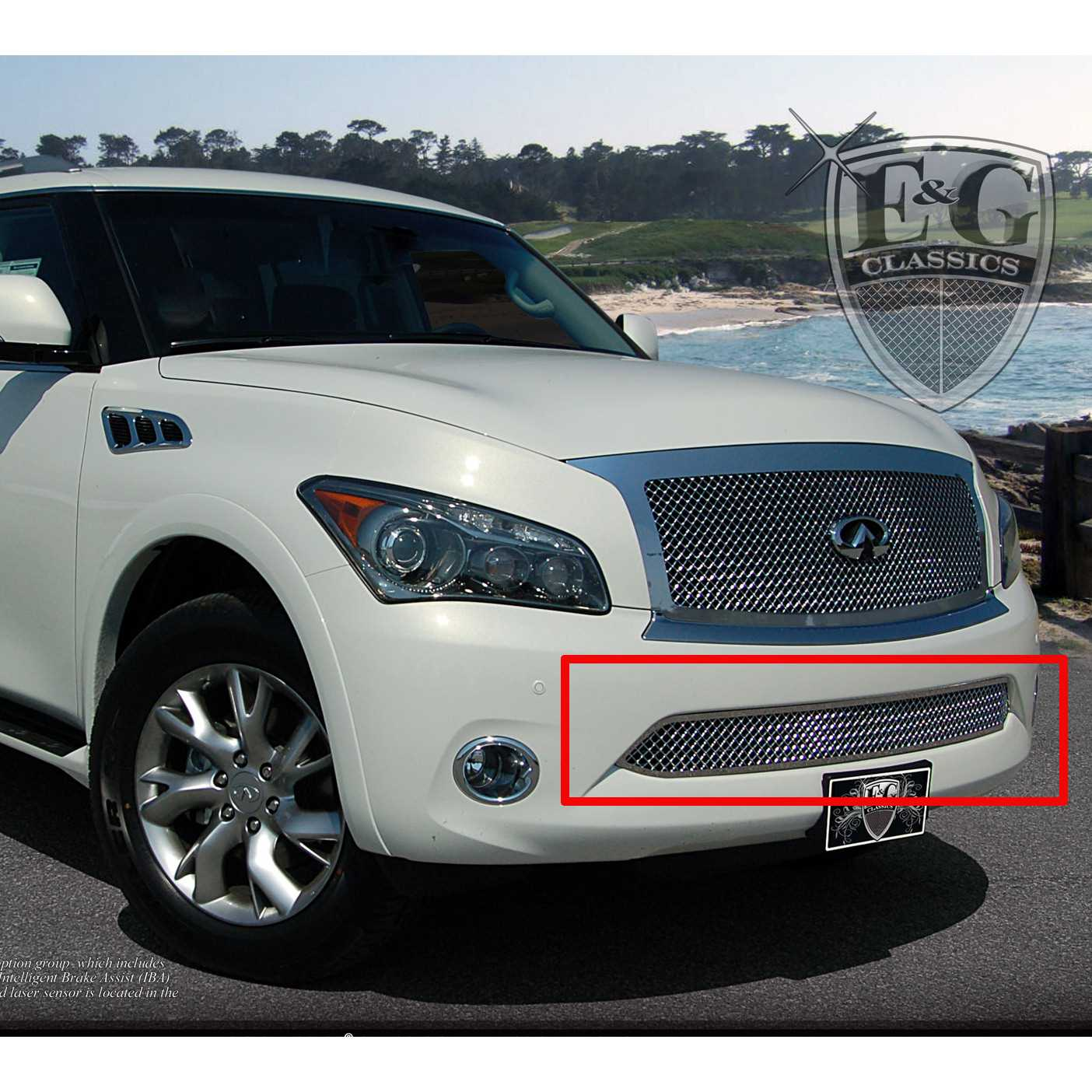 Eg classics 2011 2014 infiniti qx56 grille lower only heavy mesh eg classics 2011 2014 infiniti qx56 grille lower only heavy mesh grille 1365 010l 11 vanachro Image collections